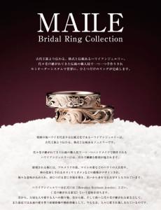 img_main_maile